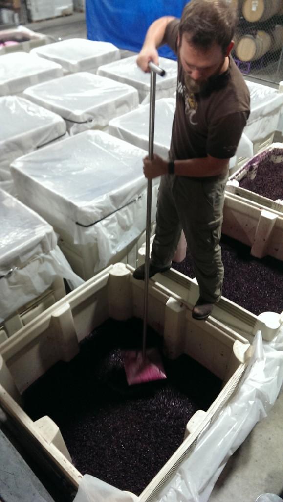 Fermentation in a 1.5 Ton Vessel